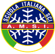 logo AMSI